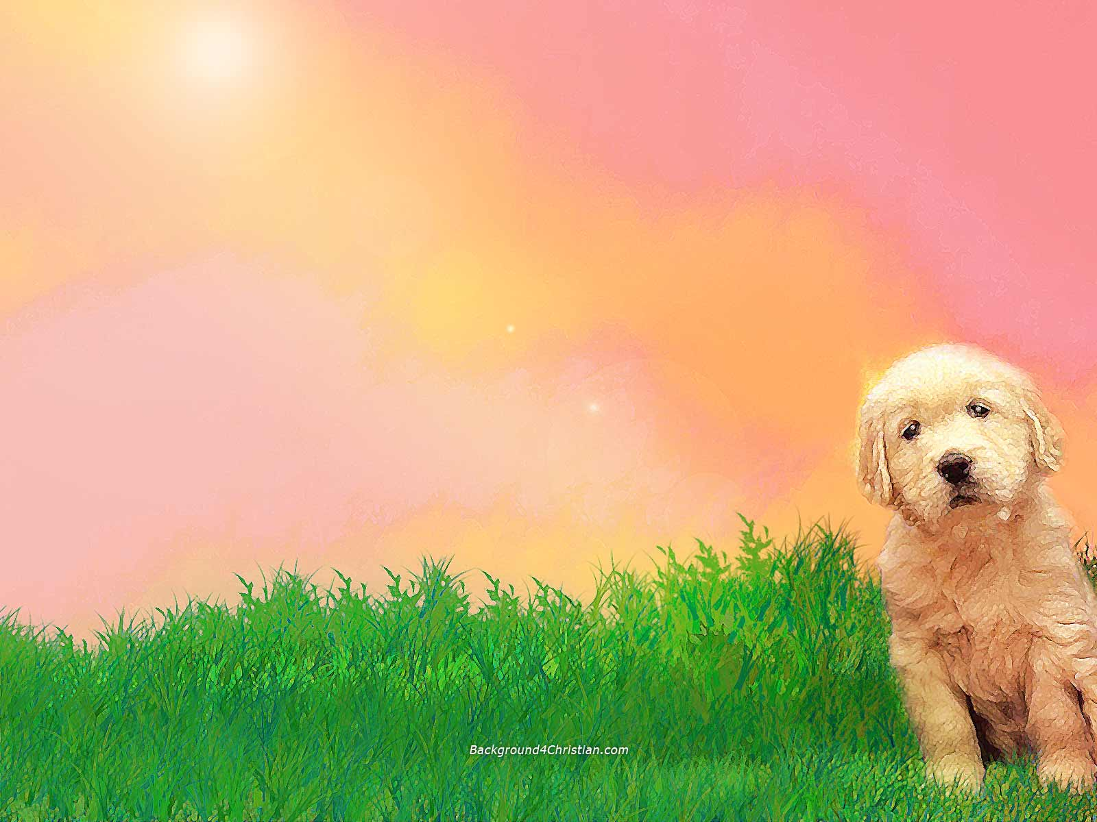 Cute Powerpoint Background Designs | Top Pictures Gallery