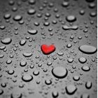 4333278-rood-hart-als-een-regen-druppel-op-de-grijze-achtergrond.jpg