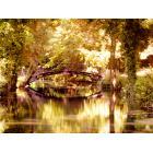 Monet-brug_HDR2-03_TM-1600.png
