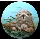 california-sea-otter-mano.jpg