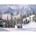 Winter-Wonderland-1-1024x768.jpg