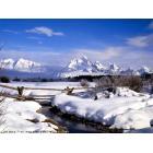 www_PicsDesktop_com_8.jpg